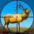 野鹿猎杀之旅游戏最新版