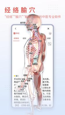 3Dbody解剖学