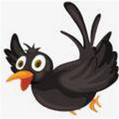 乌鸦传媒app